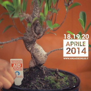 bonsai-aid-aids-2014
